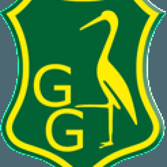Groen Geel Hockey TIM Fysiotherapie